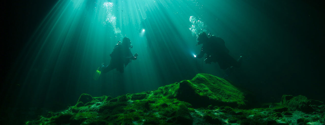 Diving in the Caribbean and Cenote.