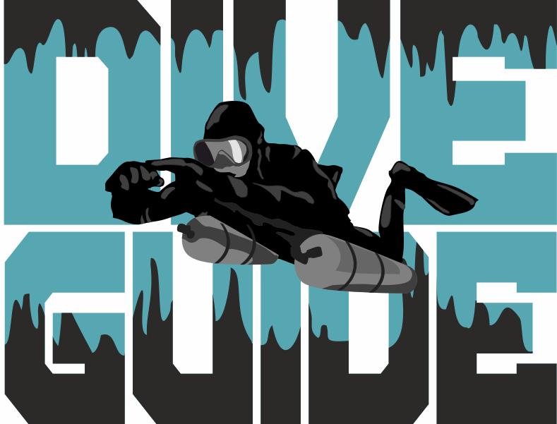 diver-logo_3